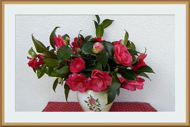 Bouquet de camélias