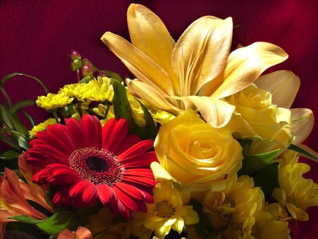 Bouquet sang et or