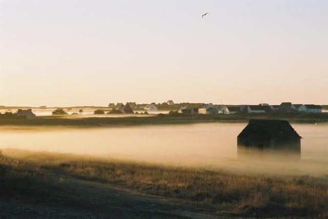 Brouillard sur la Lande