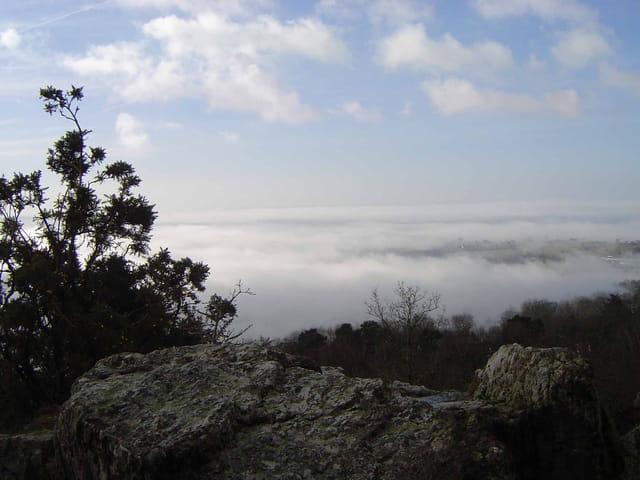 Brume dans les collines de normandie