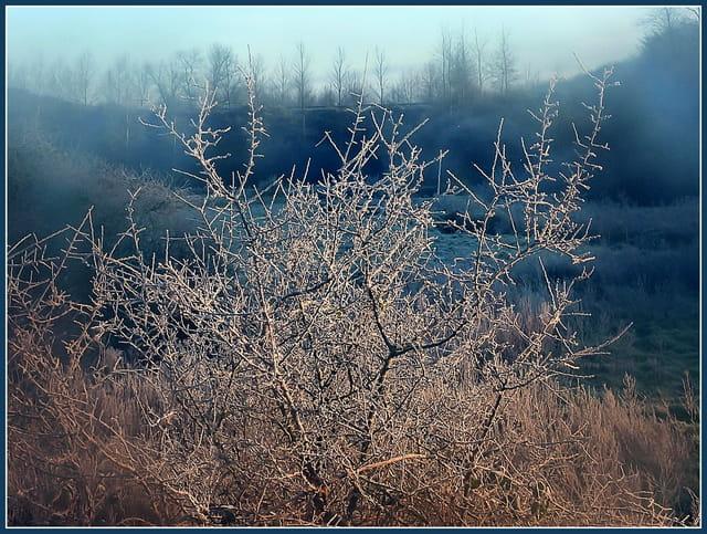Brume et gelée dans la vallée