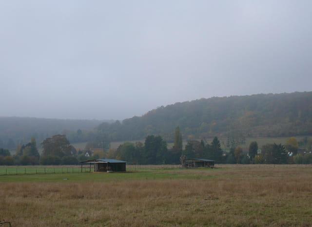 Brume matinale en Normandie