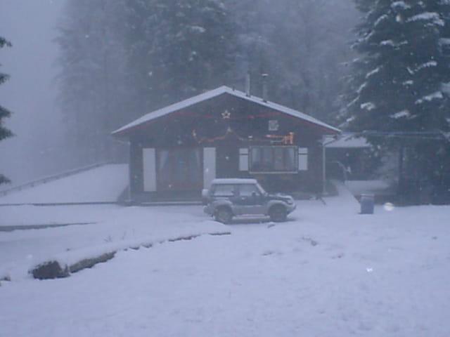 Brume sur etoile des neiges