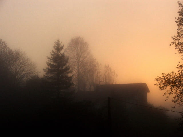 Brumes matinales