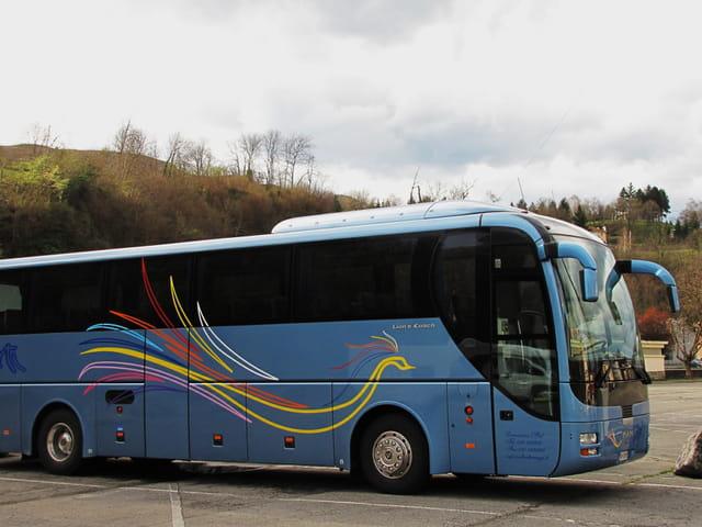 Bus de tourisme italien - Décor paon.
