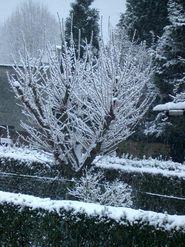 C'est beau la neigearc en ciel