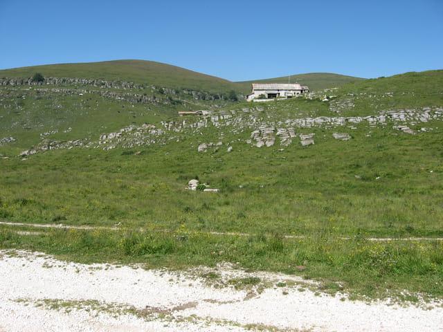 Cabane de berger et marmottes