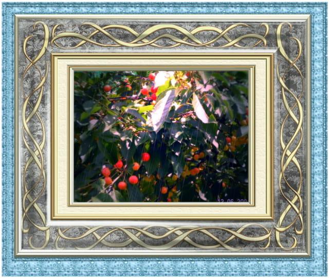 Cadre cerise
