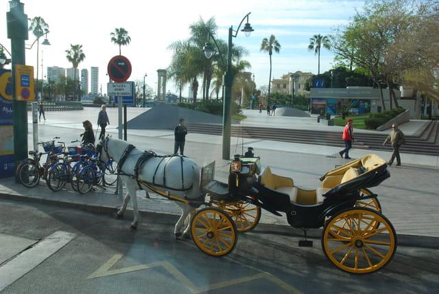 calèche à Malaga