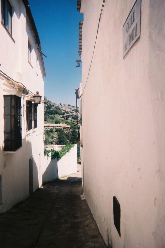 Calle del porta