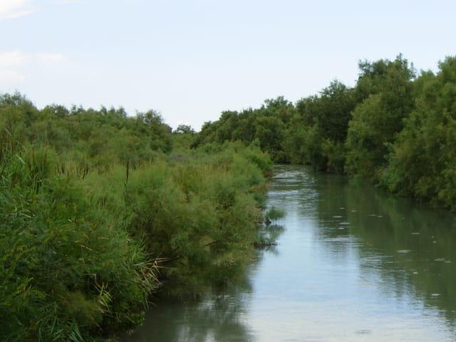Calme cours d'eau à Port Saint Louis du Rhône