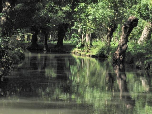 Calme et Silence
