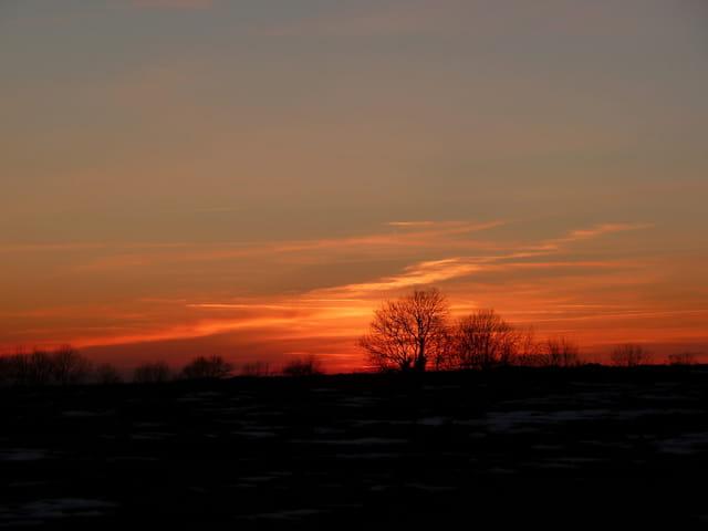 Campagne hivernale sur ciel embrasé