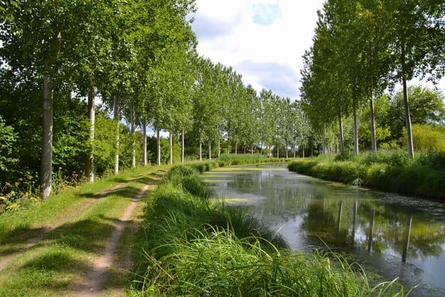 Canal de Berry - Les Aubris