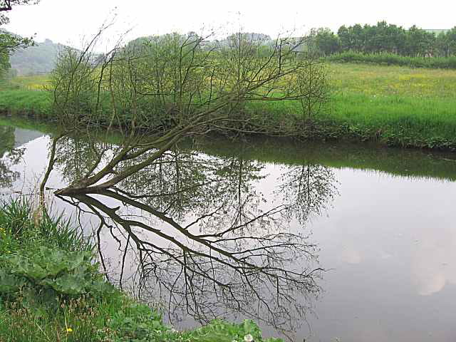 canal de l u0026 39 ourthe par isabelle defroidmont sur l u0026 39 internaute