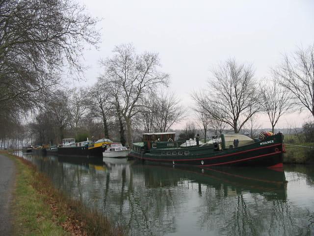 Canal du midi hivernage