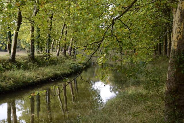 Canal du Nivernais - Monceaux le Comte