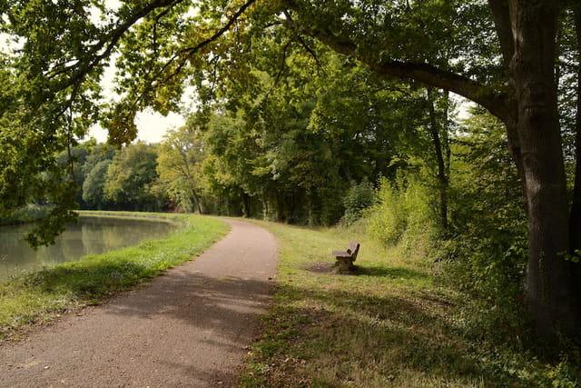 Canal latéral à la Loire - Sermoise sur Loire