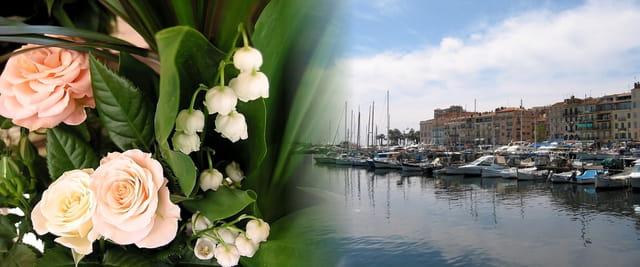 Cannes et le port