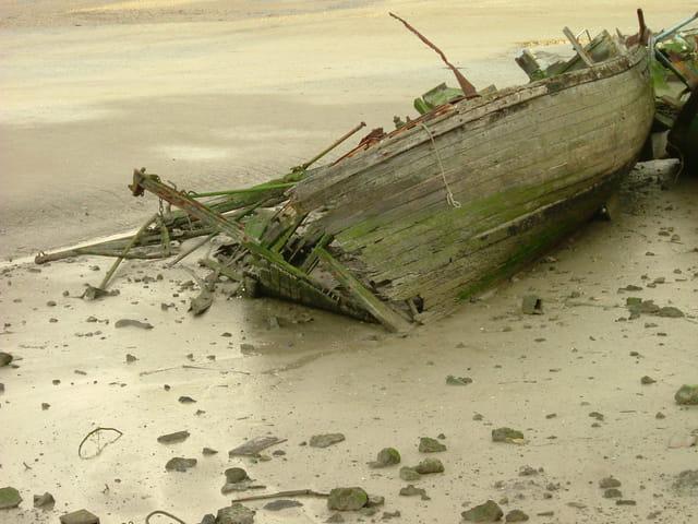Carcasse à basse mer