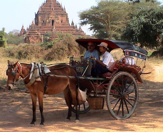Carriole sur le site de Bagan