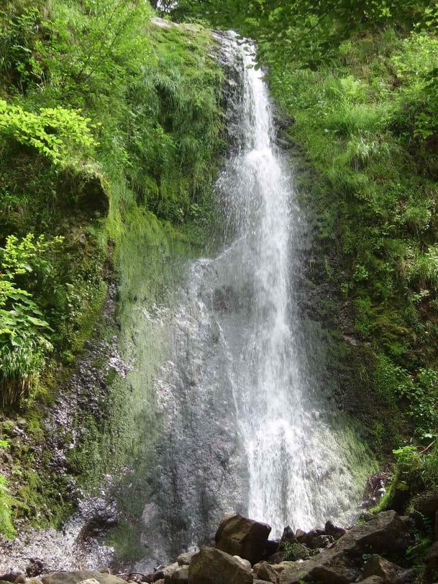 Cascade par sophie navarro sur l 39 internaute for Cascada par
