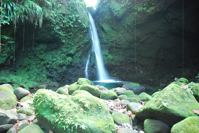cascade de la Dominique