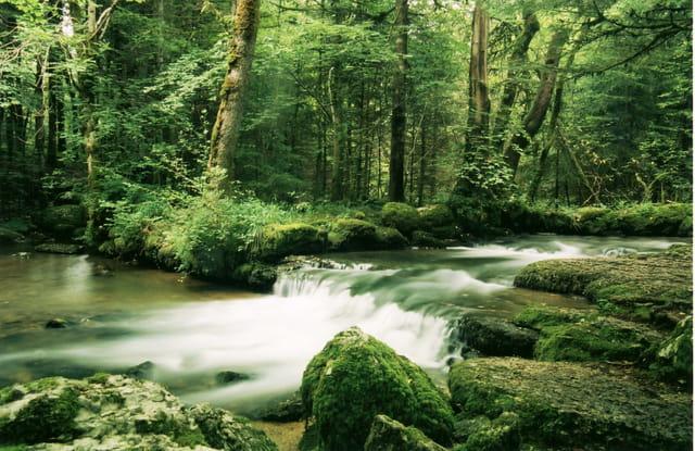 Cascades du Hérisson 3