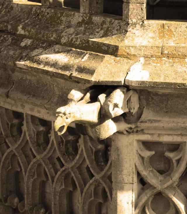 Cathédrale St-�tienne