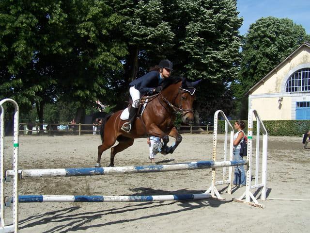 Cavalière en saut d'obstacles.