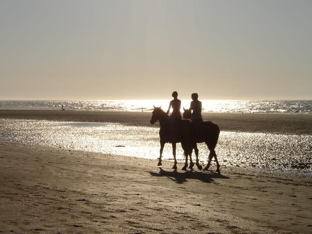 Cavaliers soleil couchant