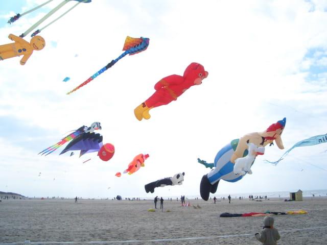 Cerf-volants volant au vent...