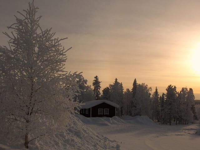 Chalets en Laponie