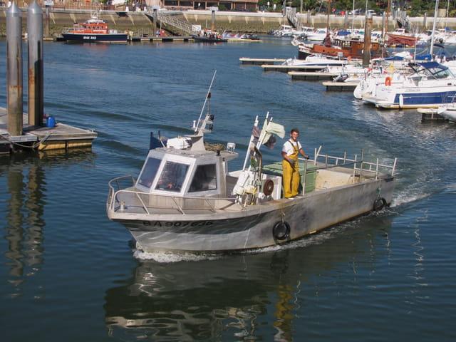 Chalutier rentrant au port.