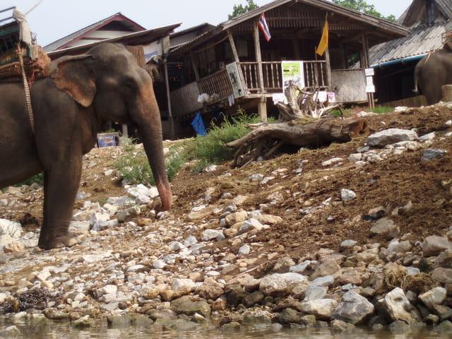 Chang Rai, au bord de la rivière Mae Nam Kok