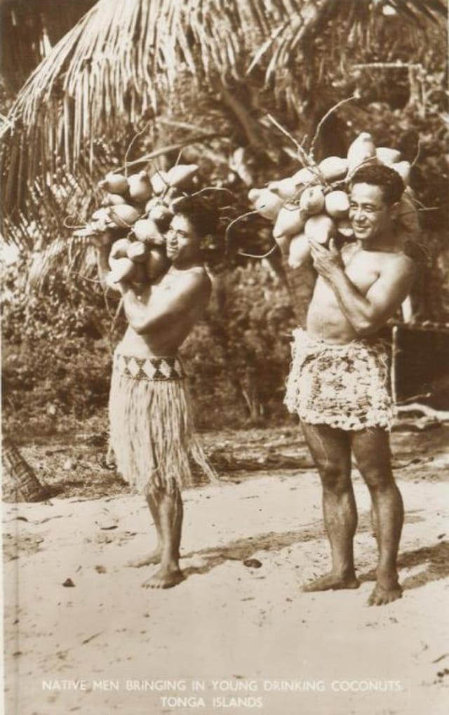 Chargés de noix de coco
