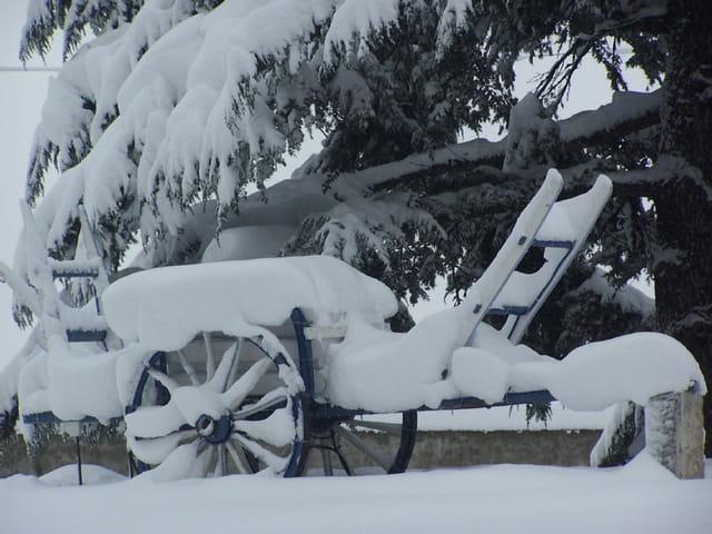 Charrette sous la neige