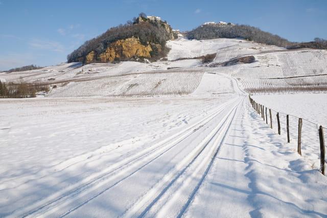 Château Chalon et ses vignes sous la neige