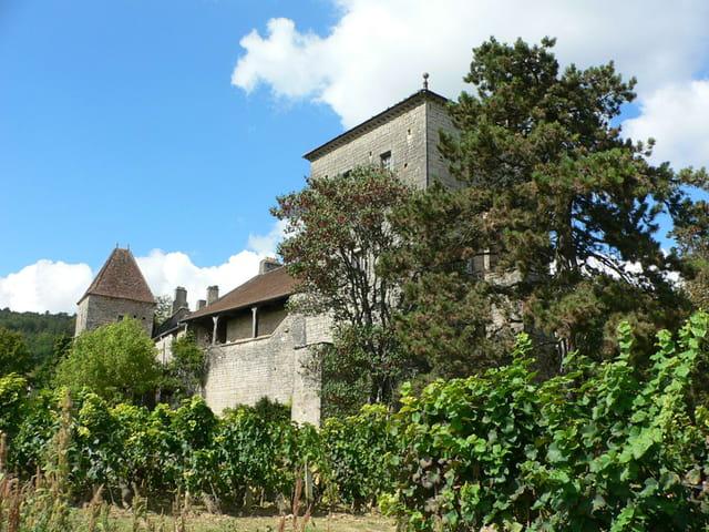 Château de Gevrey