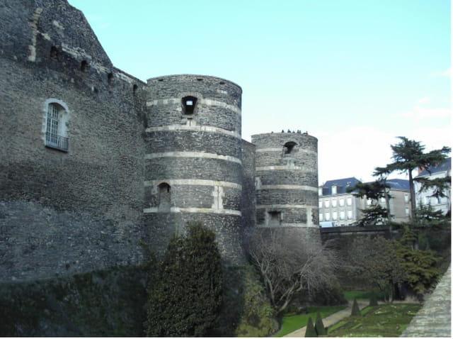 Château du roi-rené