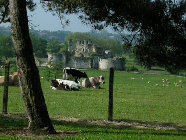 Château fongravey