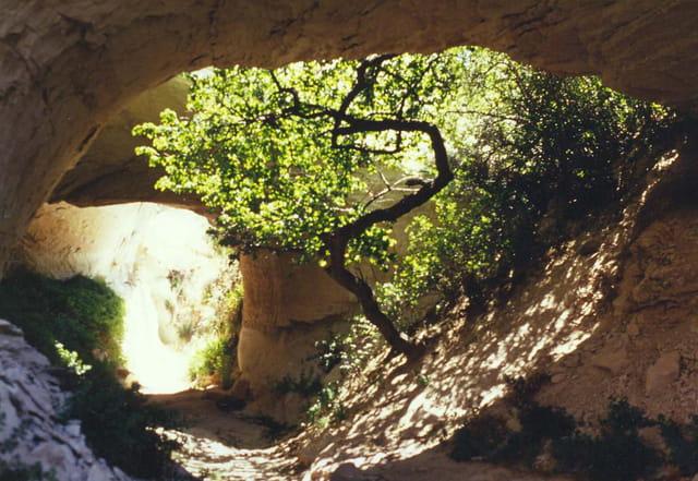 Chemin Cappadoce