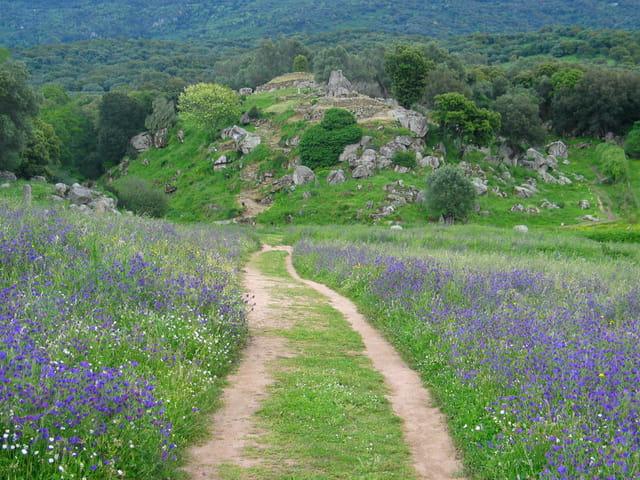 Chemin de Filitosa