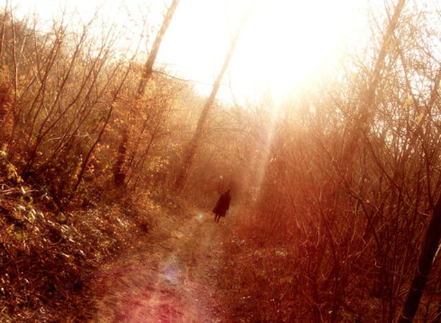 Chemin de Grigny