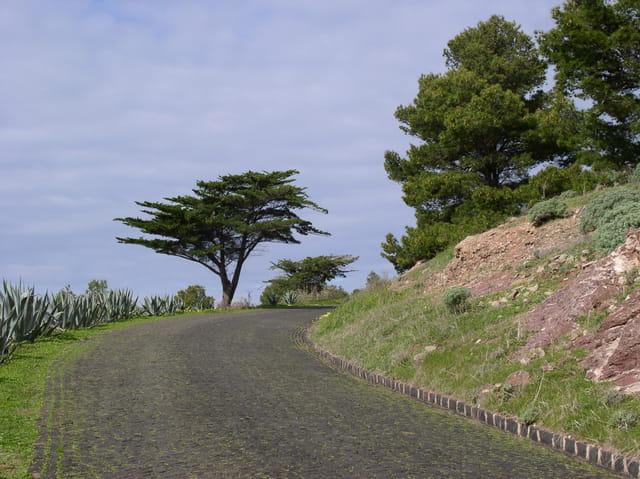Chemin de Porto Santo