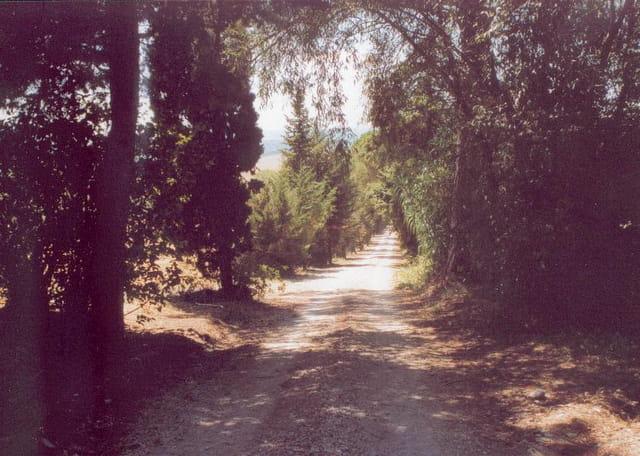 chemin toscan