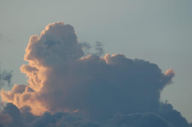Chien de nuage