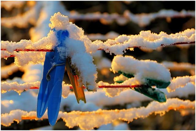 Chomage hivernal