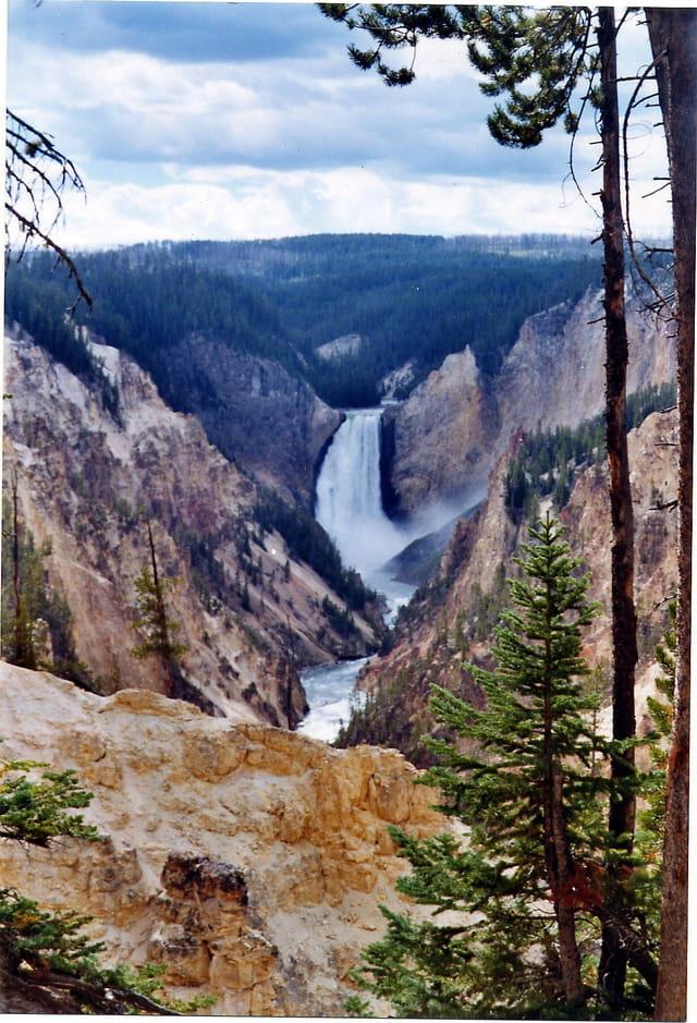 Chutes dans le Grand Canyon de Yellowstone aux USA