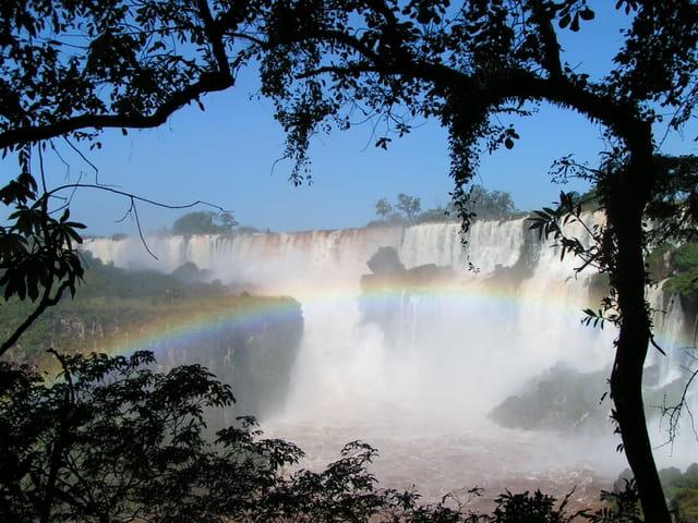 Chute Iguazu